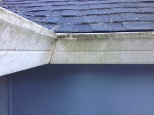 Gutter Pressure Washing Before